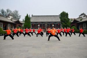 Tai Chi training done by group of Tai Chi practitioners